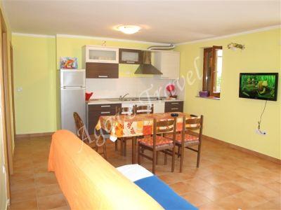 Appartement Typ B 118